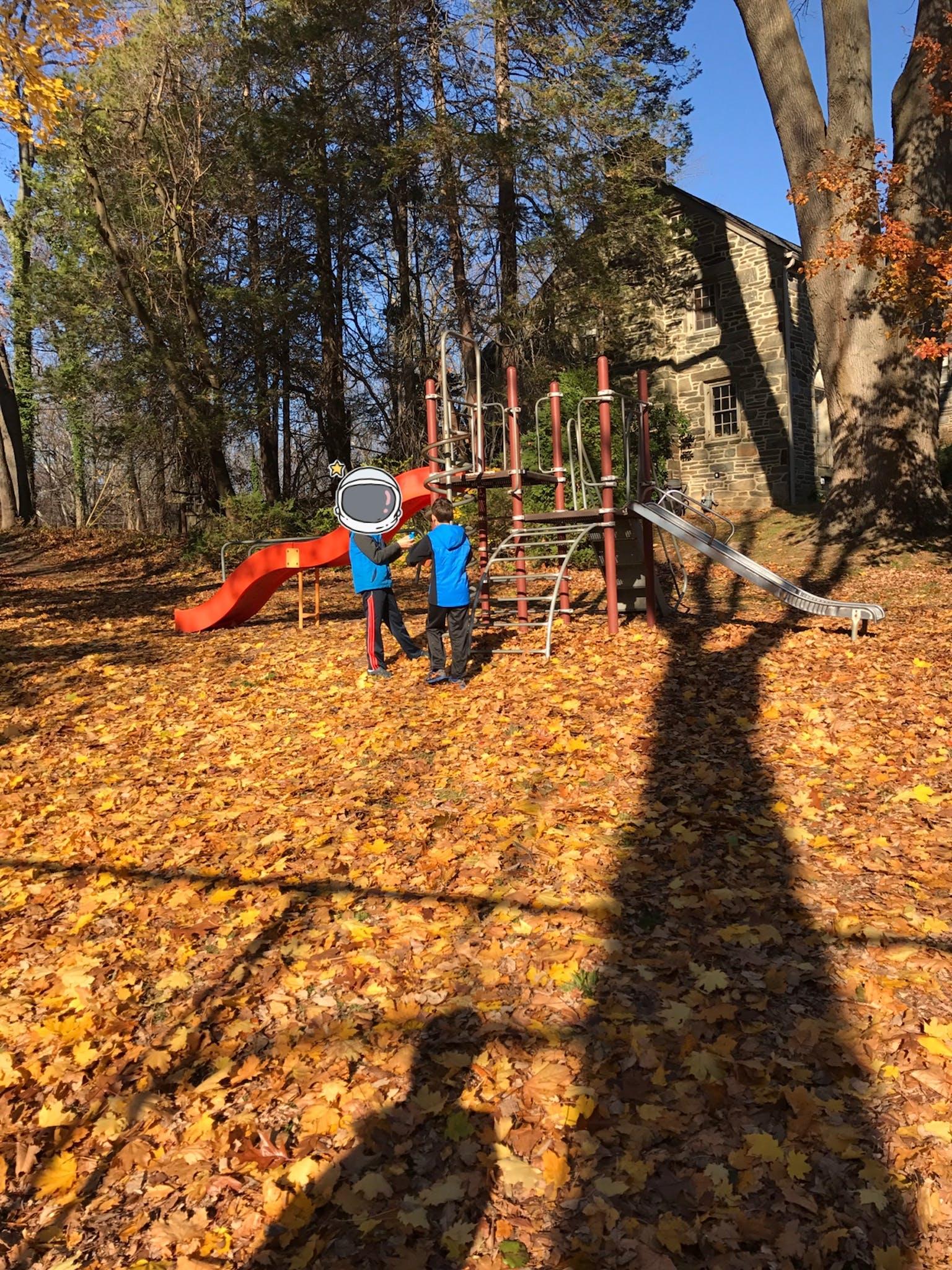 Carroll park in Wynnewood, PA