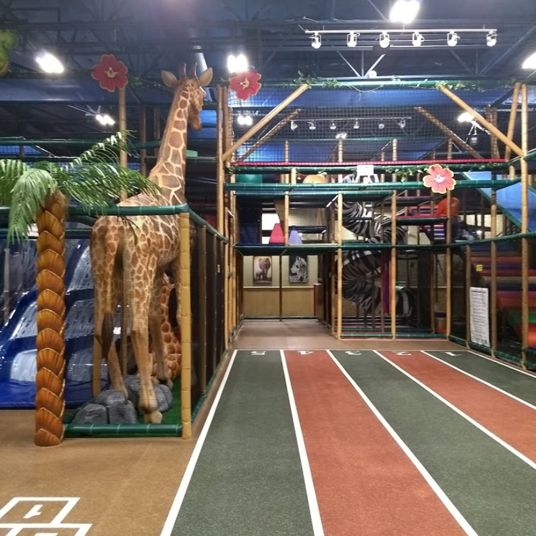 Safari Run Plano >> Safari Run Plano In Plano Parent Reviews On Winnie